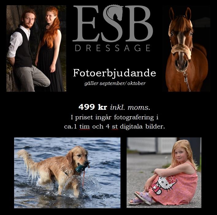 ESB foto erbjudande